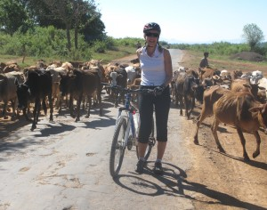 Cycling holiday in Laos